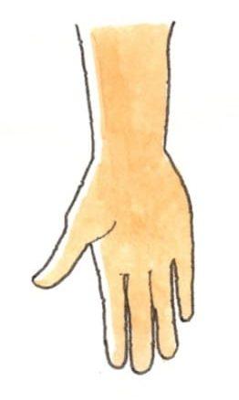 親指の計測