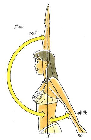 伸展・屈曲