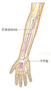 前骨間神経