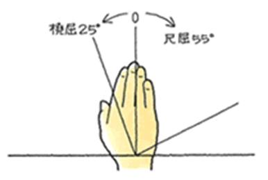 参考運動(橈・尺屈)