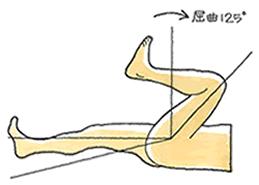 膝屈曲と伸展